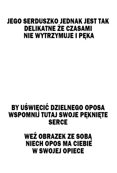 OPOS OBRAZEK2 REWERS-male